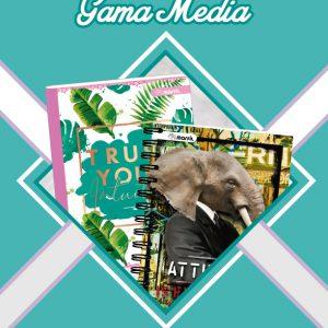 Gama media